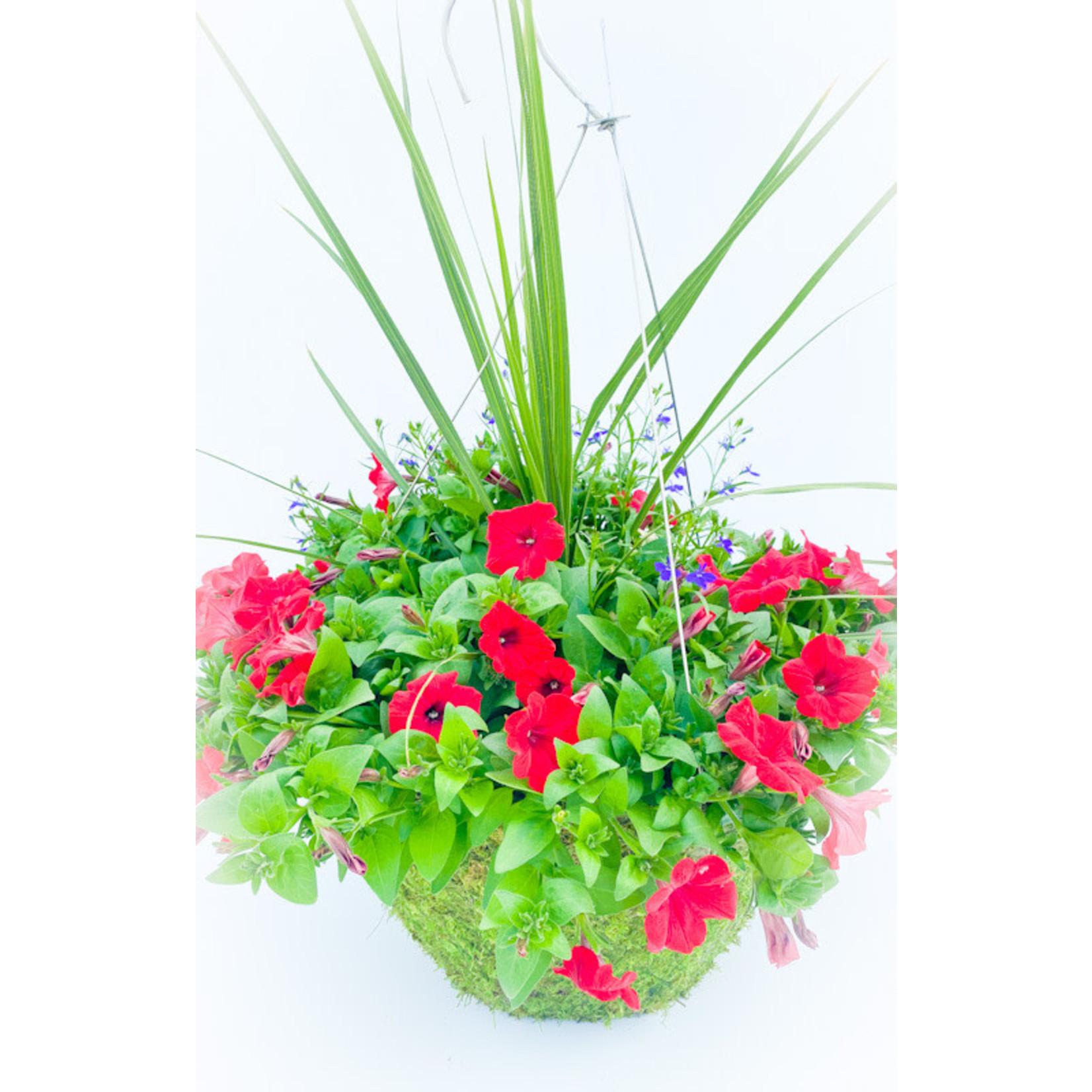 """Petunia Moss Pot HB - 16"""""""