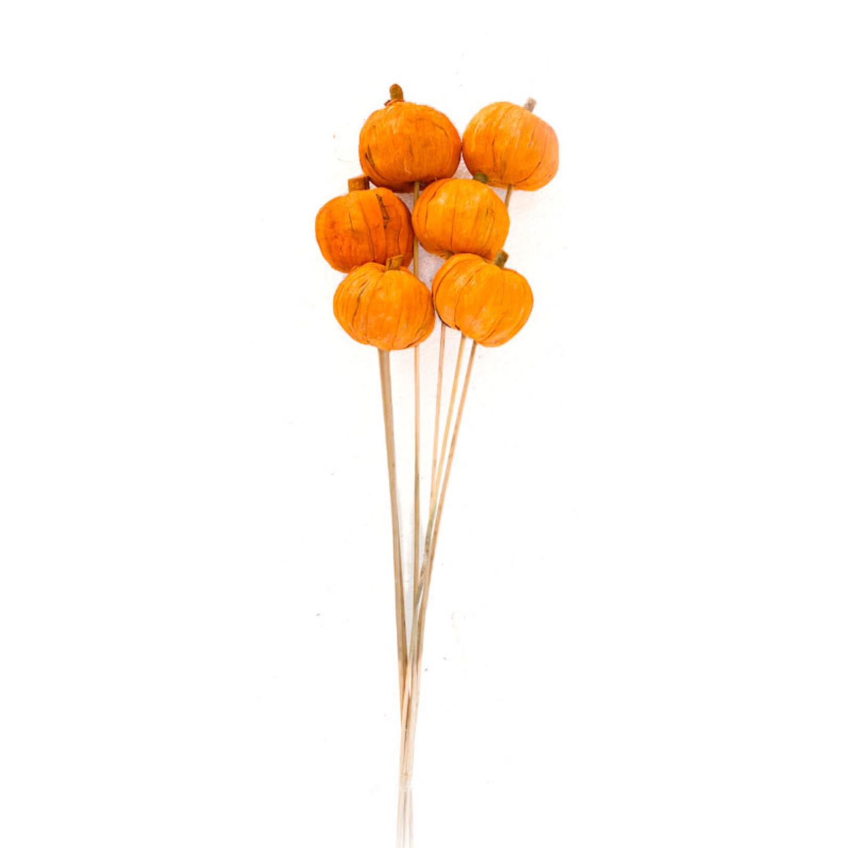 Pumpkins on Stem 'Yellow' 6/pkg