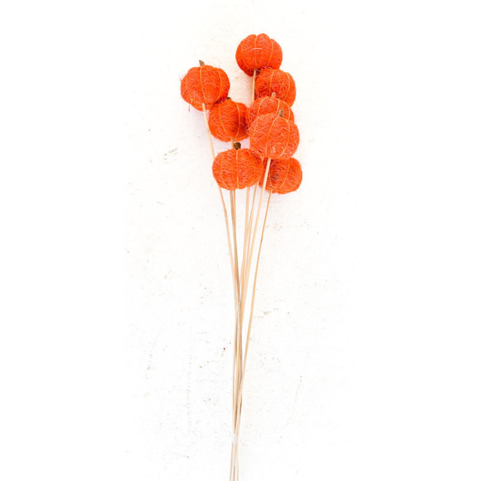 Fibre Pumpkins - Orange 8 Stem