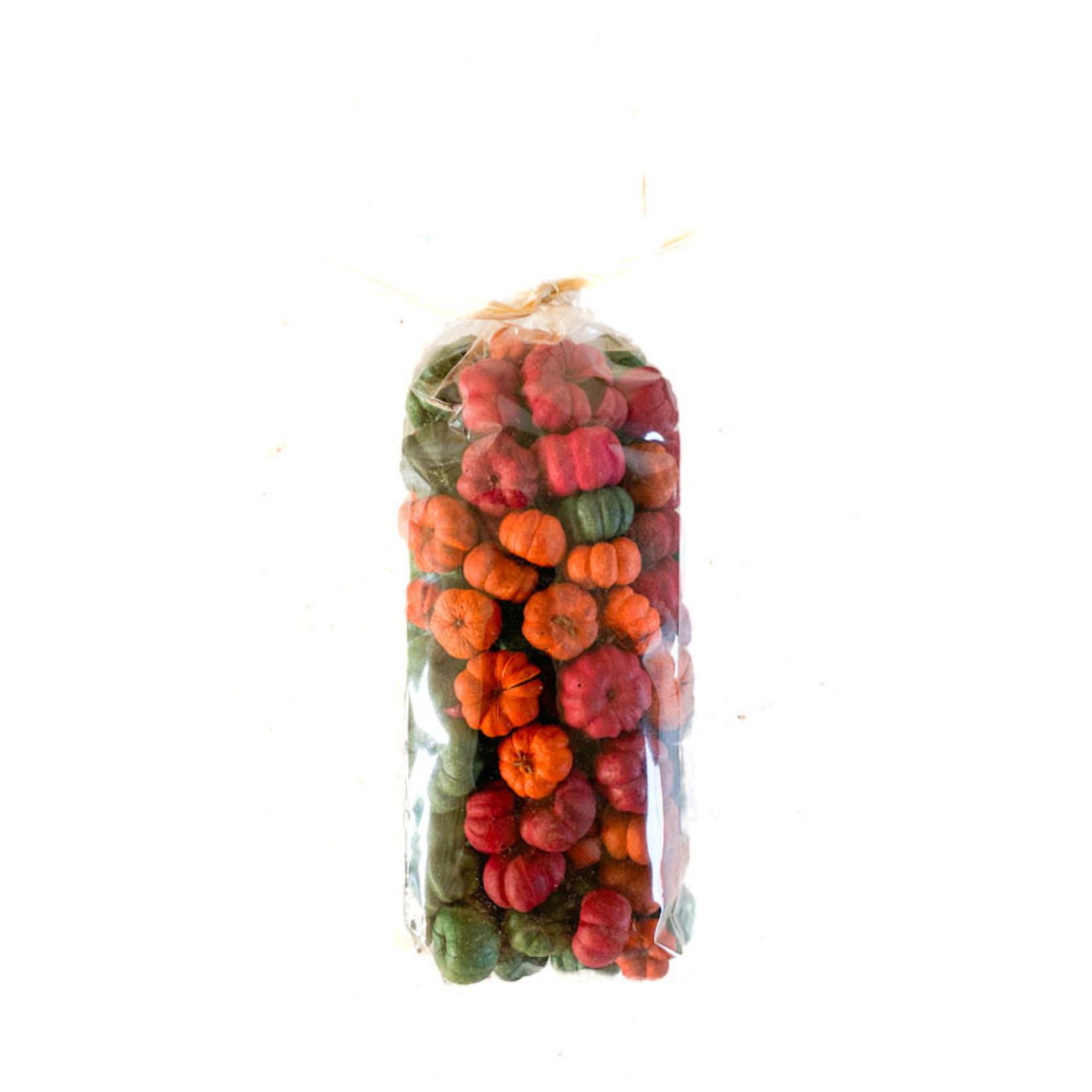 Pumpkin Pods 'Putka' -Mixed