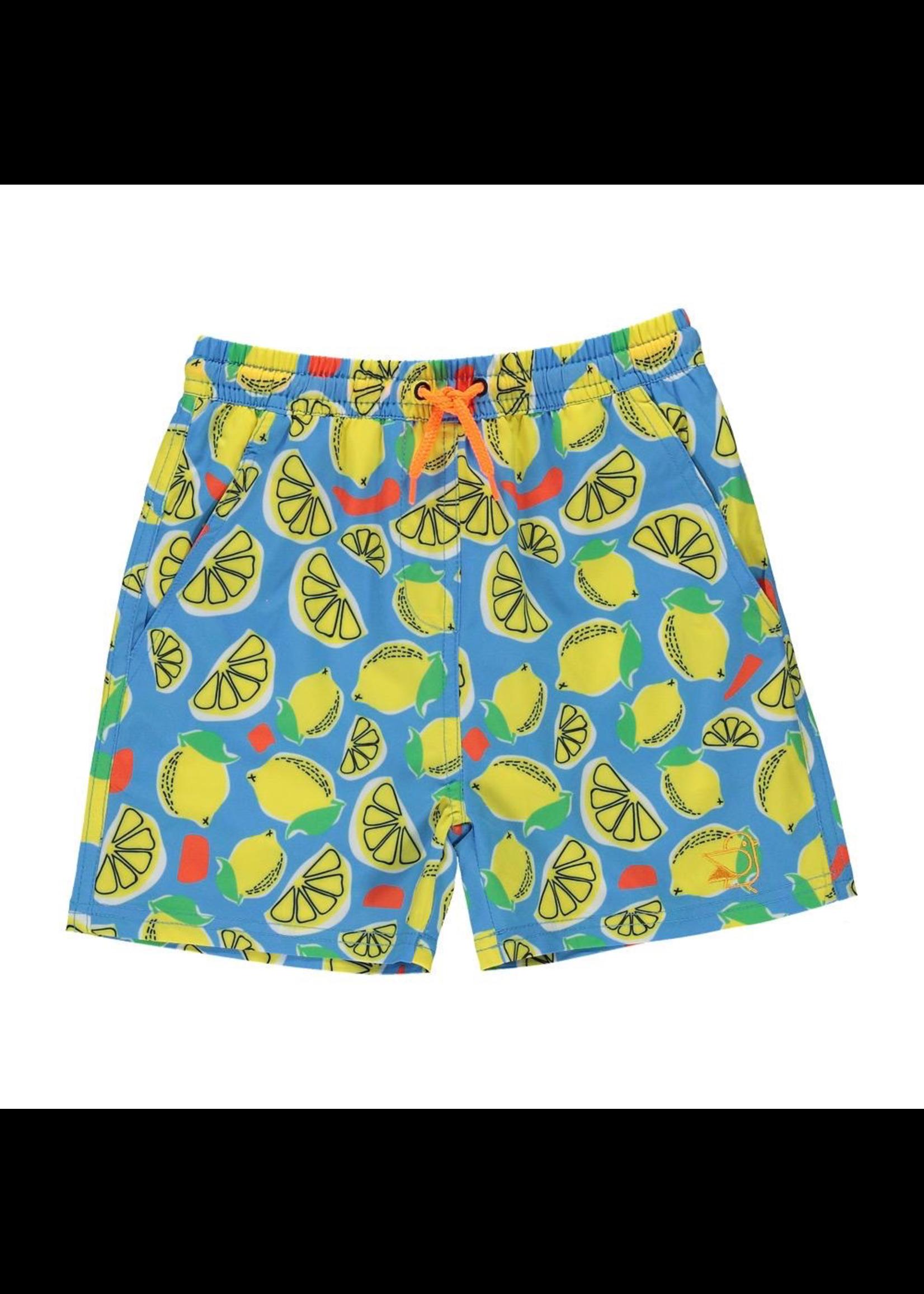 Birdz Children Birdz Children, Lemonade Swim Shorts
