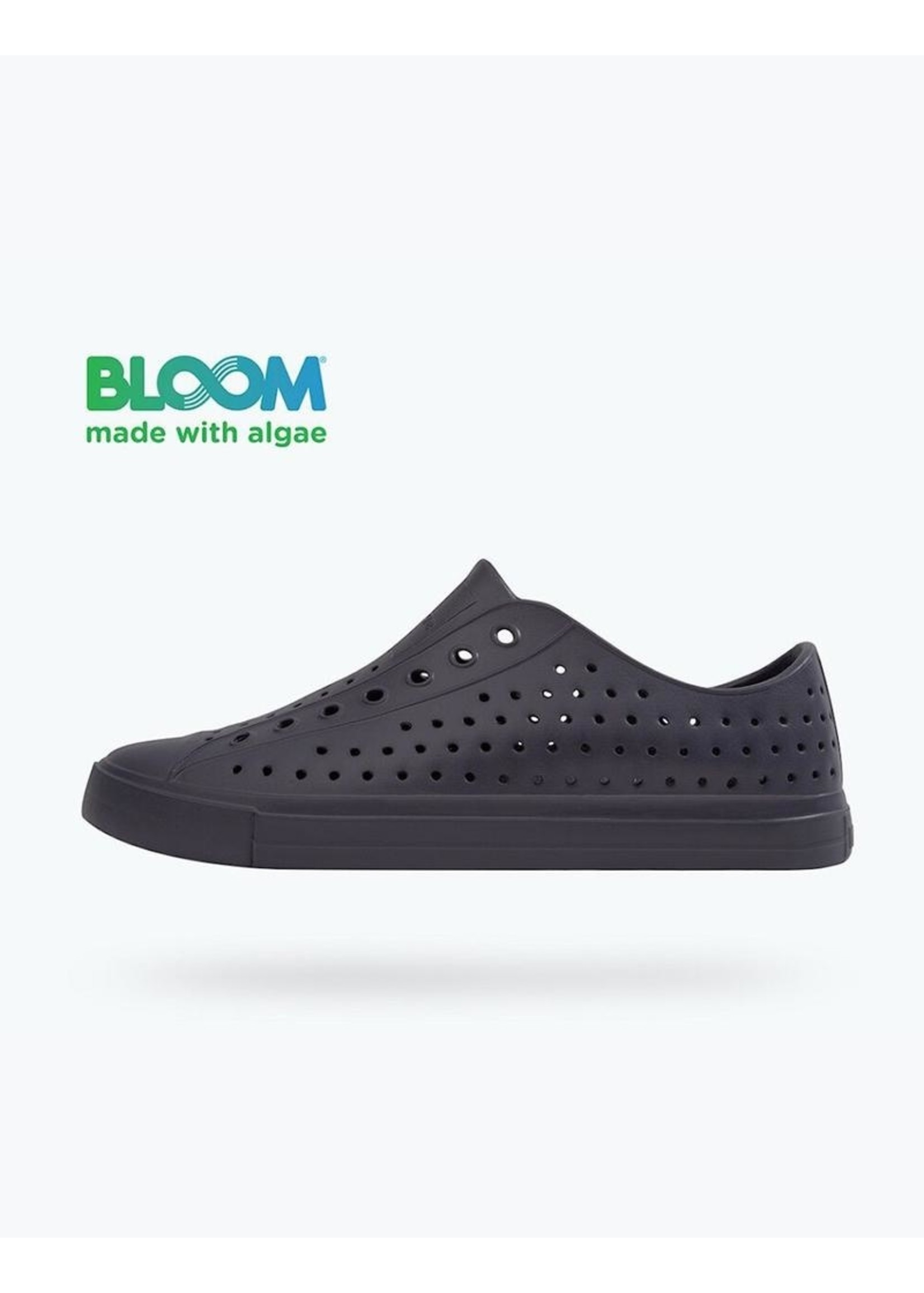 Native Shoes Native Shoes Jefferson Bloom Archive Adult in Onyx