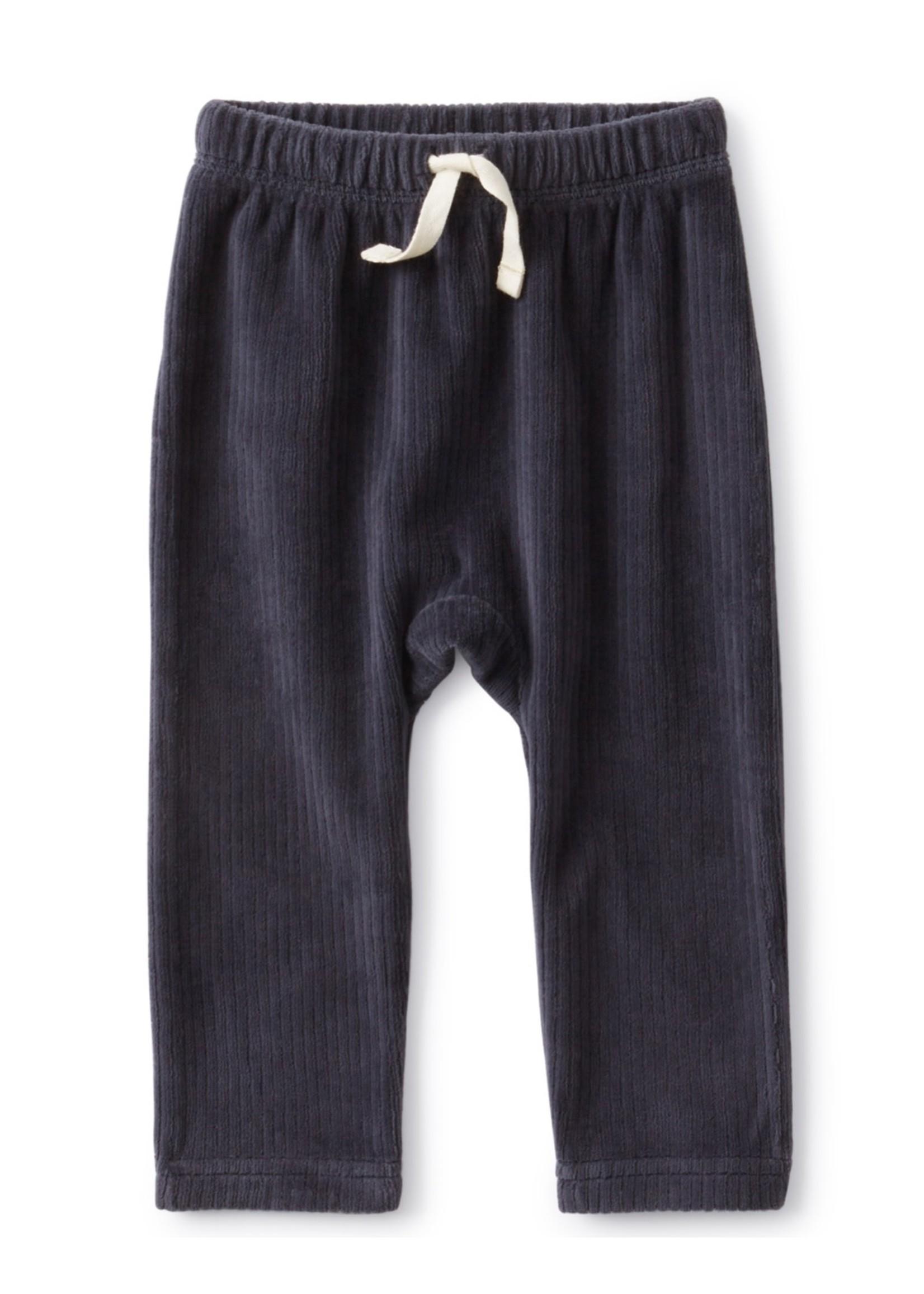 Tea Collection Tea Collection, Indigo Velour Baby Pants