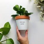 My Soil Mate Pot