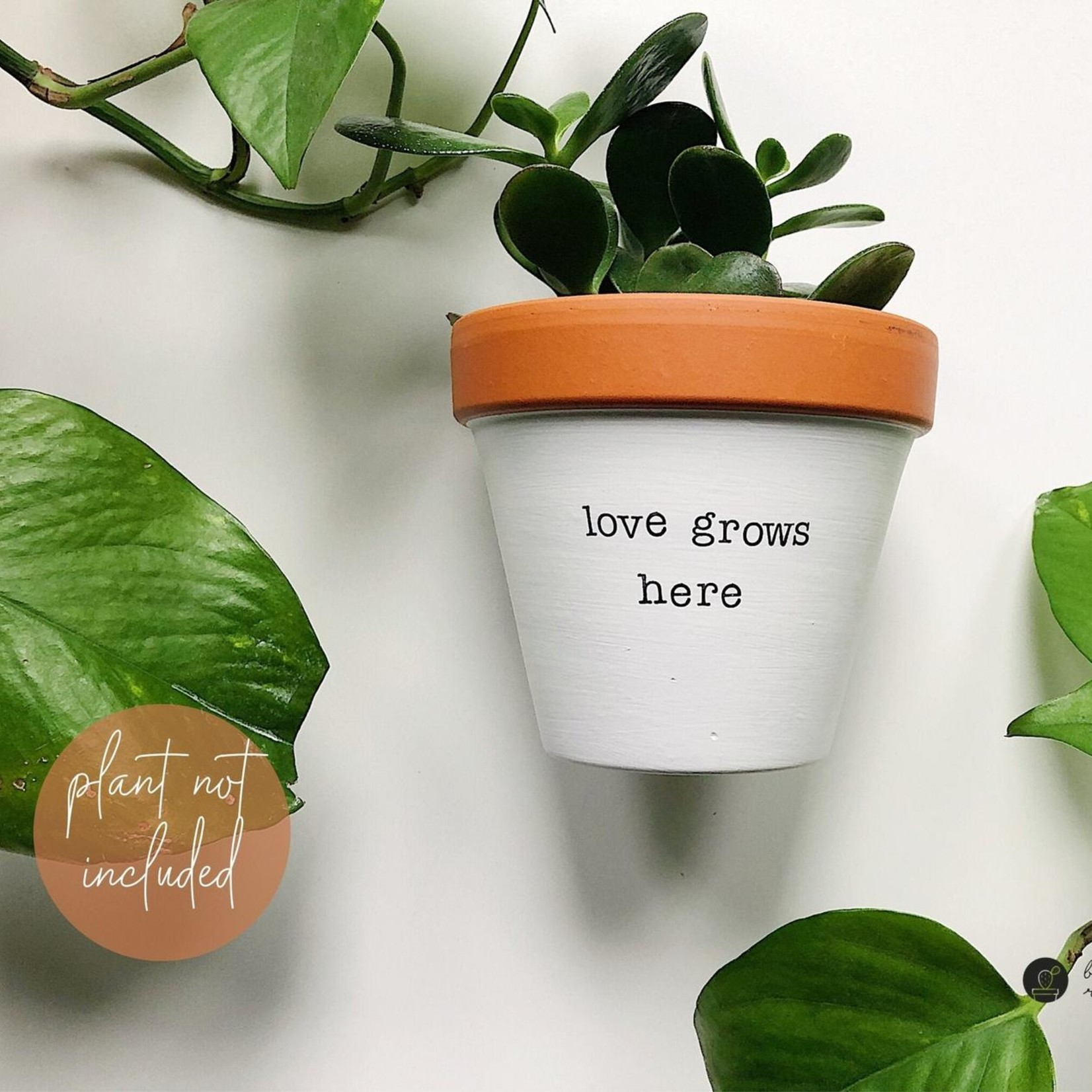 Love Grows Here Pot
