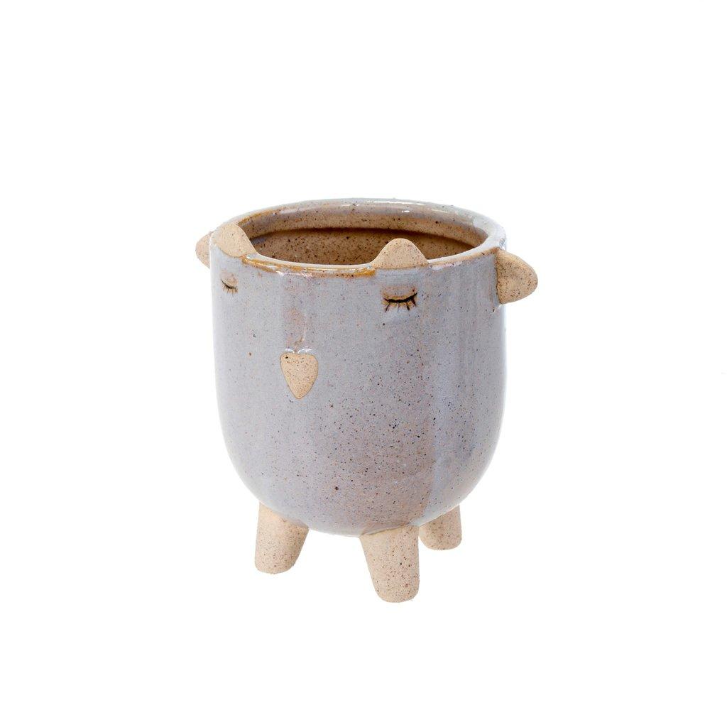 Little Lamb Pot Lavender