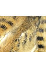 HARELINE DUBBIN Barred Magnum Rabbit Strips