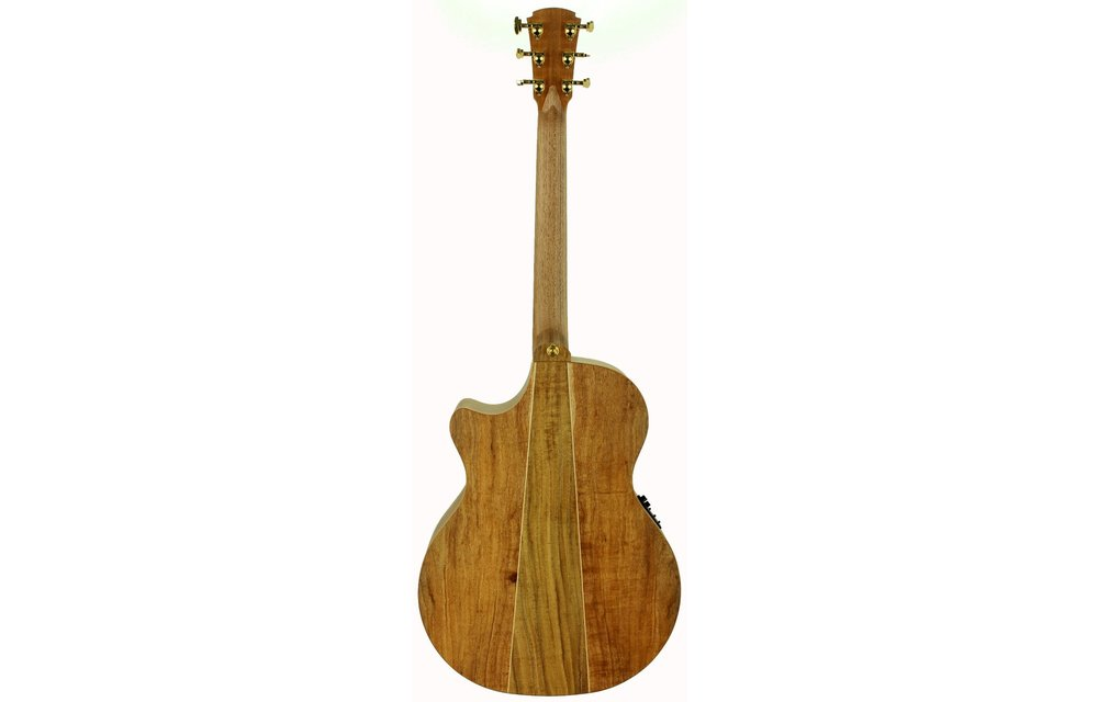 Cole Clark AN Grand Auditorium - 3 Series, All Blackwood with cutaway (AN3EC-BLBL)