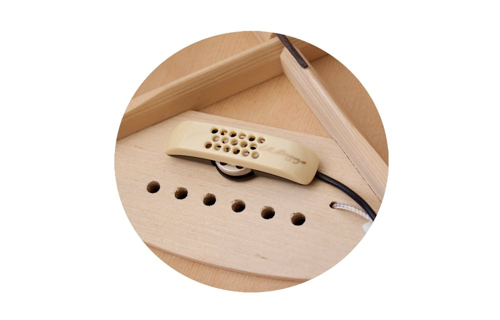 LR Baggs Anthem SL Acoustic Guitar Pickup System w/Element & Microphone