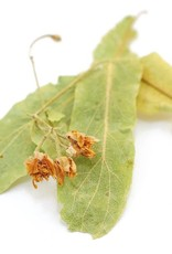 Golden Poppy Herbs Linden Flowers & Leaf BULK HERB organic, bulk/oz