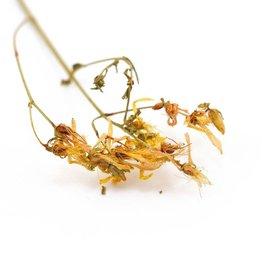Golden Poppy Herbs Saint John's Wort, LOCAL DRY, Organic, bulk/oz