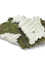 Golden Poppy Herbs Raspberry Leaf, LOCAL, organic, bulk/oz