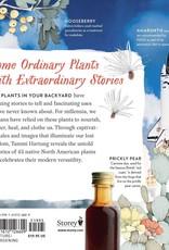 Golden Poppy Herbs Cattail Moonshine & Milkweed Medicine - Tammi Hartung