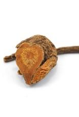 Golden Poppy Herbs Yerba Mansa, Wild-crafted, bulk/oz