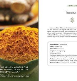 Golden Poppy Herbs Alchemy of Herbs - Rosalee De La Foret