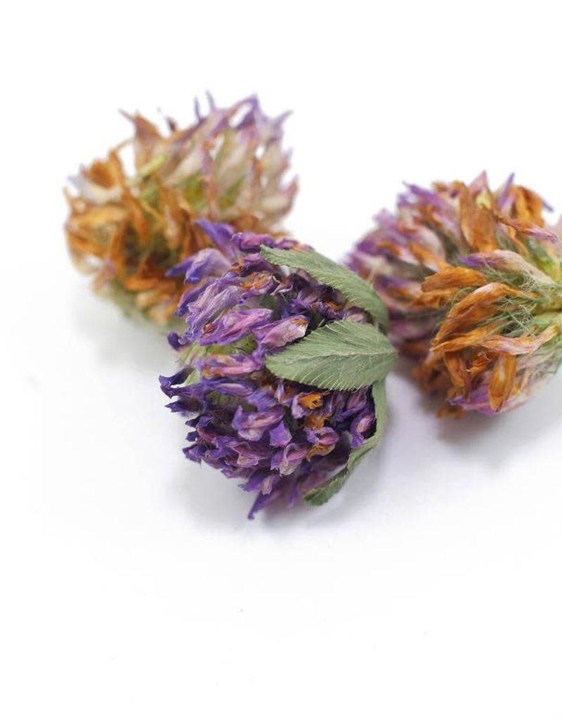 Golden Poppy Herbs Red Clover Blossoms organic, bulk/oz