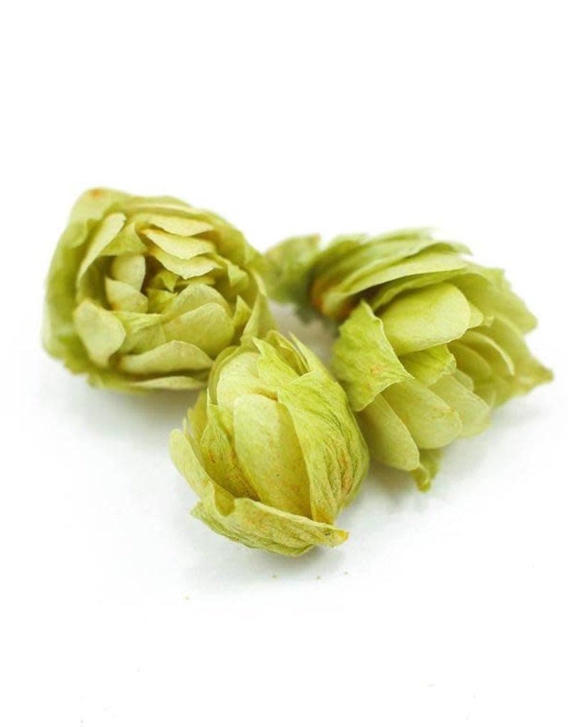 Golden Poppy Herbs Hops flowers, organic, bulk/oz
