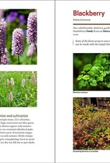 Golden Poppy Herbs The Herbal Apothecary: 100 Medicinal Herbs and How to Use Them - JJ Pursell