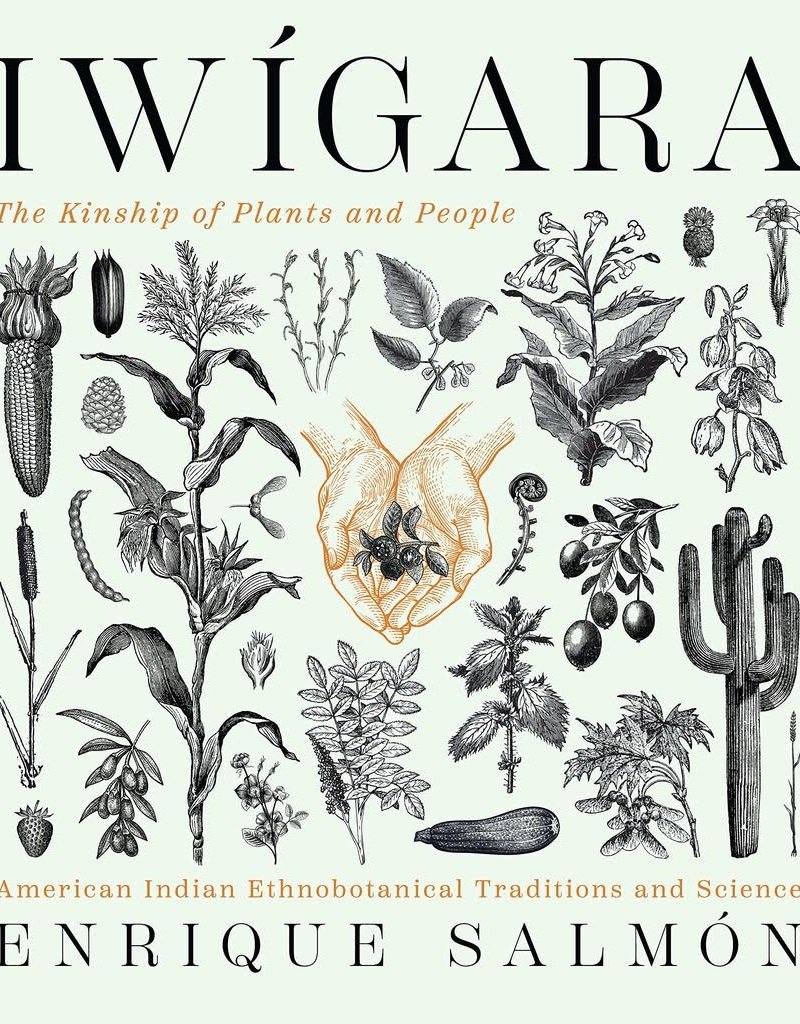 Golden Poppy Herbs Iwígara: American Indian Ethnobotanical Traditions and Science - Enrique Salmon