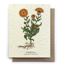 Single Plantable Seed Card