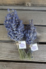 Golden Poppy Herbs Lavender Bundle - Organic (Wildcat Gardens)