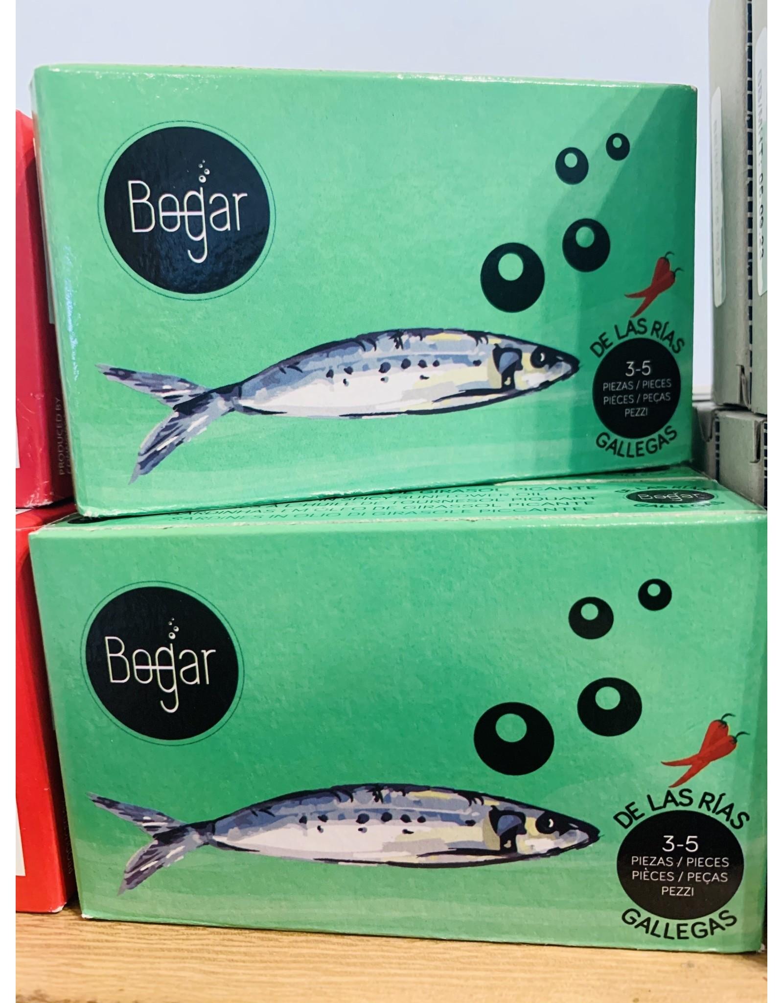 Bogar Bogar Sardines in Spicy Oil