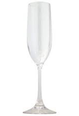 LEADINGWARE GROUP INC AC-0705 DISC  See Tr-0705 Leading Polycarbonate Acrylic Champagne Flute