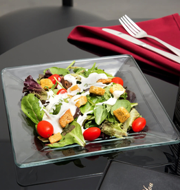 "TOV LEV ENTERPIZE 1794708 10"" Glass Tempo Square Dinner Plate 12/cs"