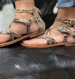 Shoes Strappy Ankle Snake Sandals
