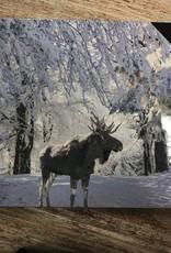 Decor Moose LED Sign