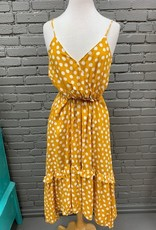 Dress Cameron Polka Dot HiLo Midi Dress