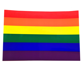 Rainbow Flag Sticker (non-reflective)