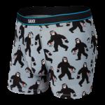 Saxx Saxx Underwear, Daytripper BB Fly, Mens, HHG-Gry Harry & The Hoops