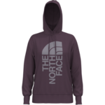 The North Face The North Face Hoodie, Trivert Pullover, Ladies