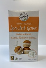 Second Spring Second Spring - Whole Wheat Pumpkin Muffin Mix