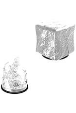 WizKids D&D Unpainted Miniature Gelatinous Cube