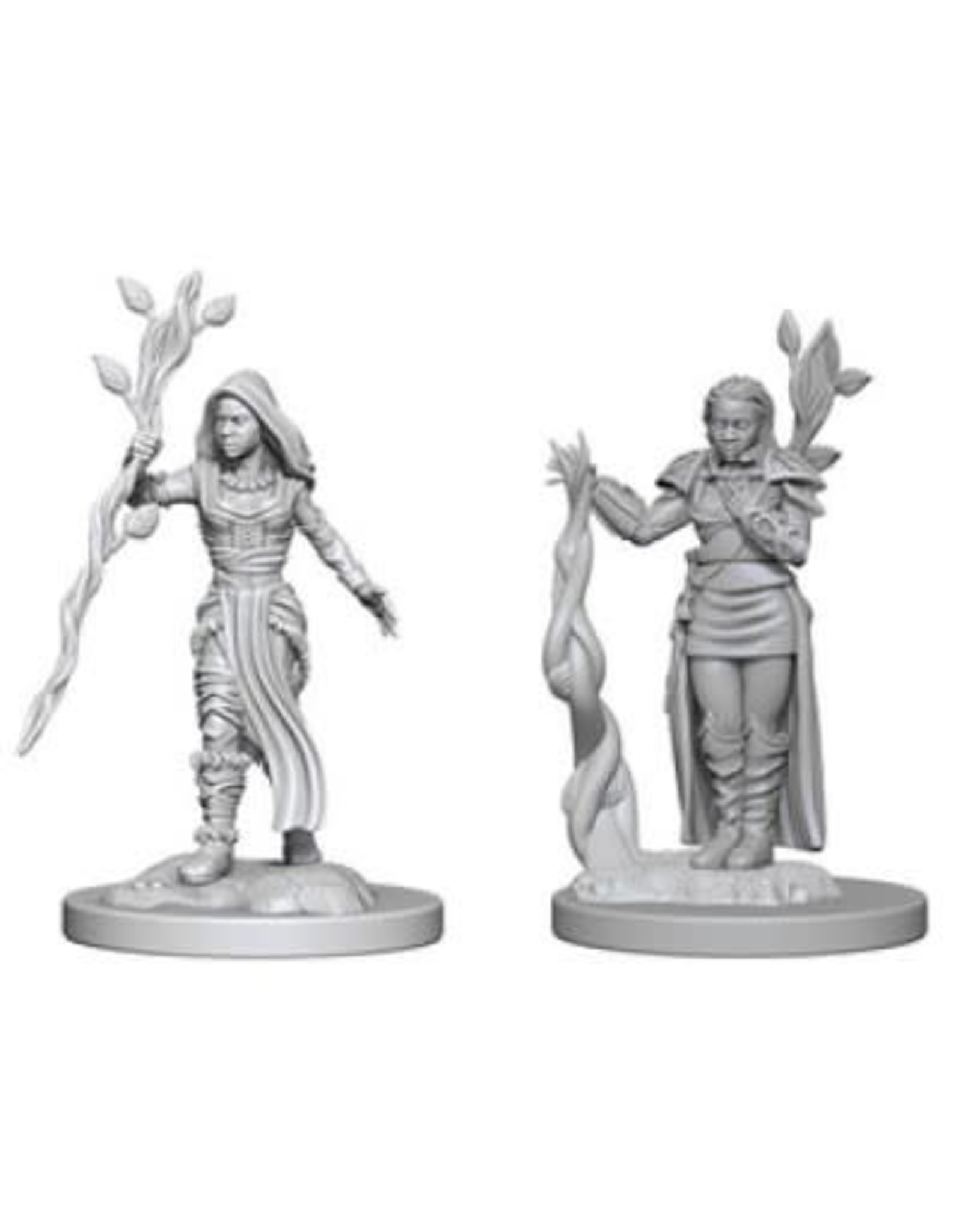 WizKids D&D Unpainted Miniature Human Druid