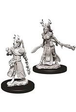 WizKids Dungeons & Dragons Nolzur's Marvelous Unpainted Miniatures: W9 Female Human Druid