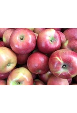 Campbell's Orchards Apples