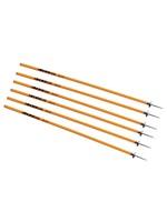 Coaching Sticks 6/Set