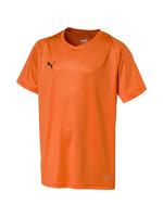 Puma Liga Core Jersey - Orange Youth