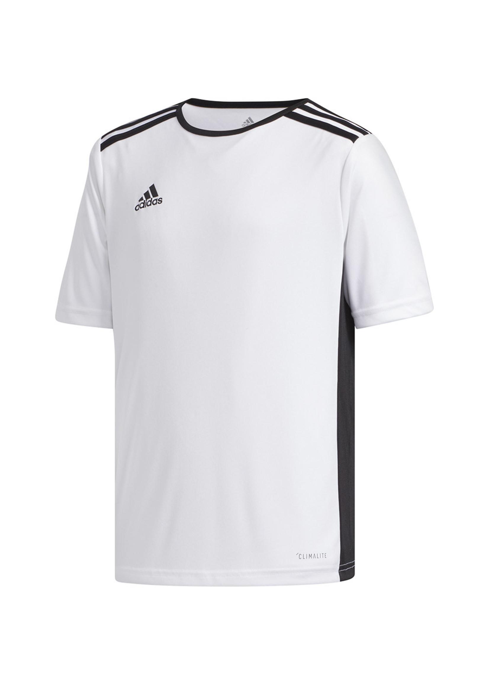 Adidas Entrada 18 Jersey White Youth