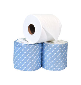 Evolv Toilet Tissue - 2 Ply, 48 Rolls/Case