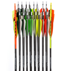 "Gold Tip GOLD TIP ARROWS WARRIOR 600 4"" FEATHERS"