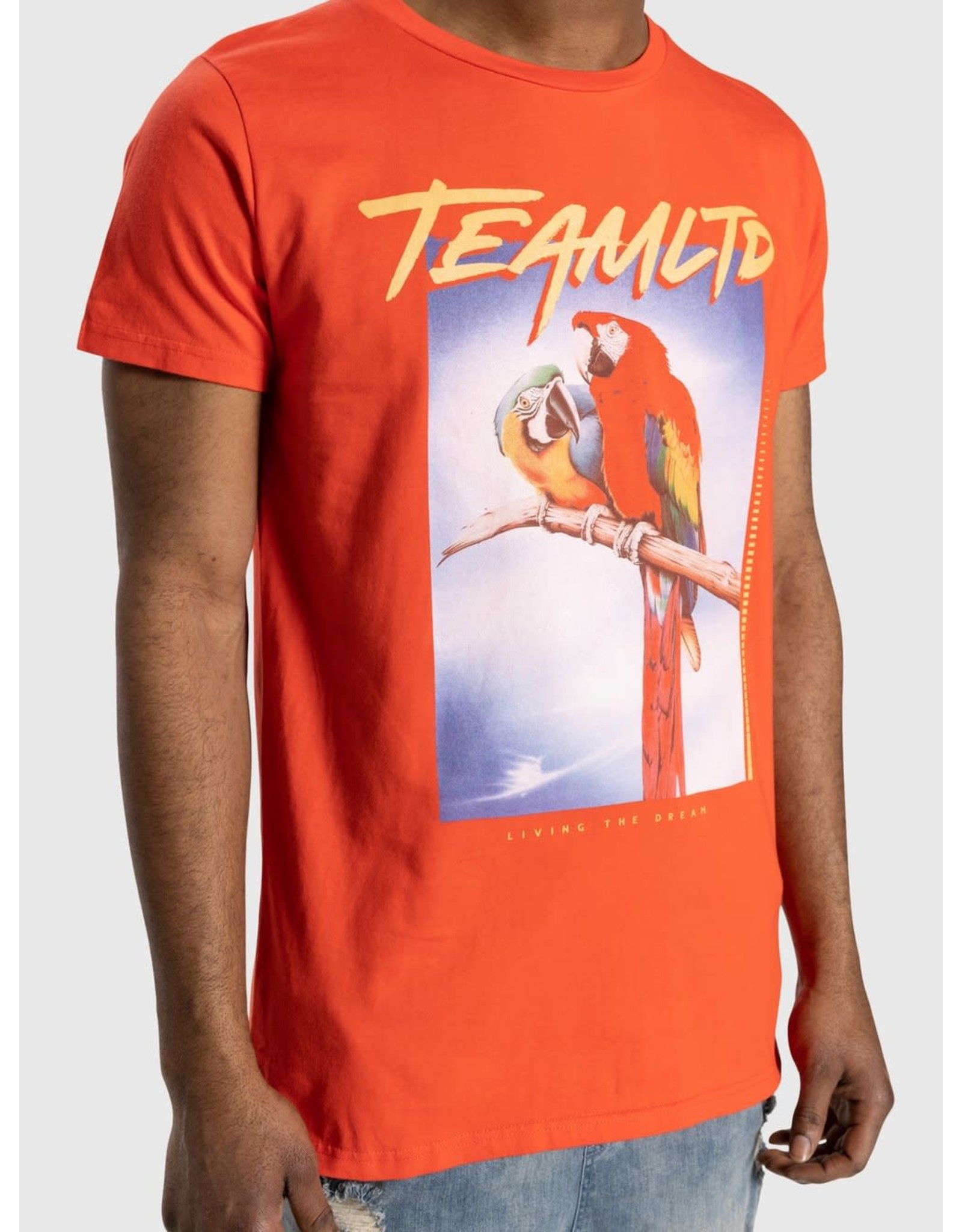 TEAMLTD Macaw Tee