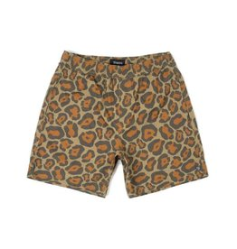 Brixton Steady Elastic WB Short