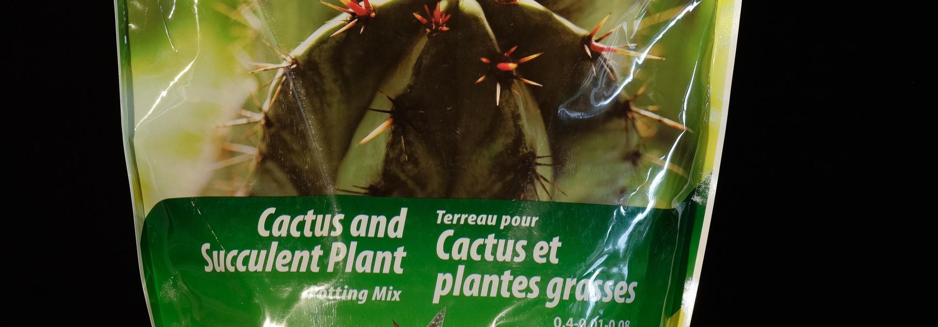 Terreau cactus et plantes grasses