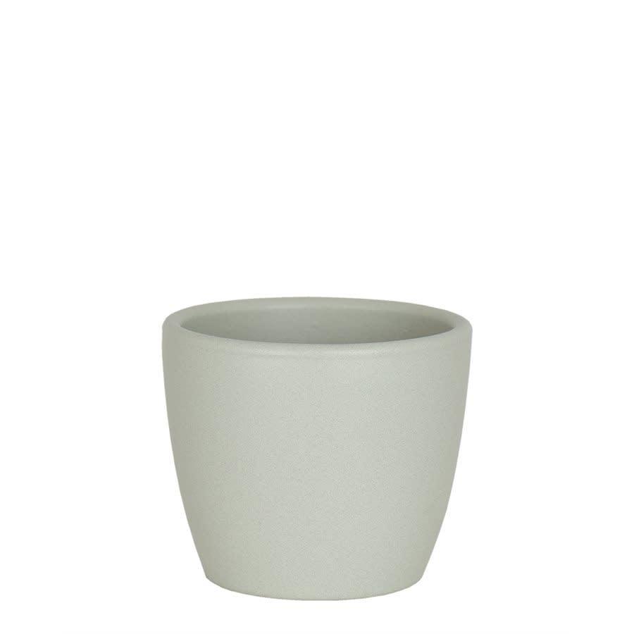 Nubia Cactus vert pâle (Pot)-1