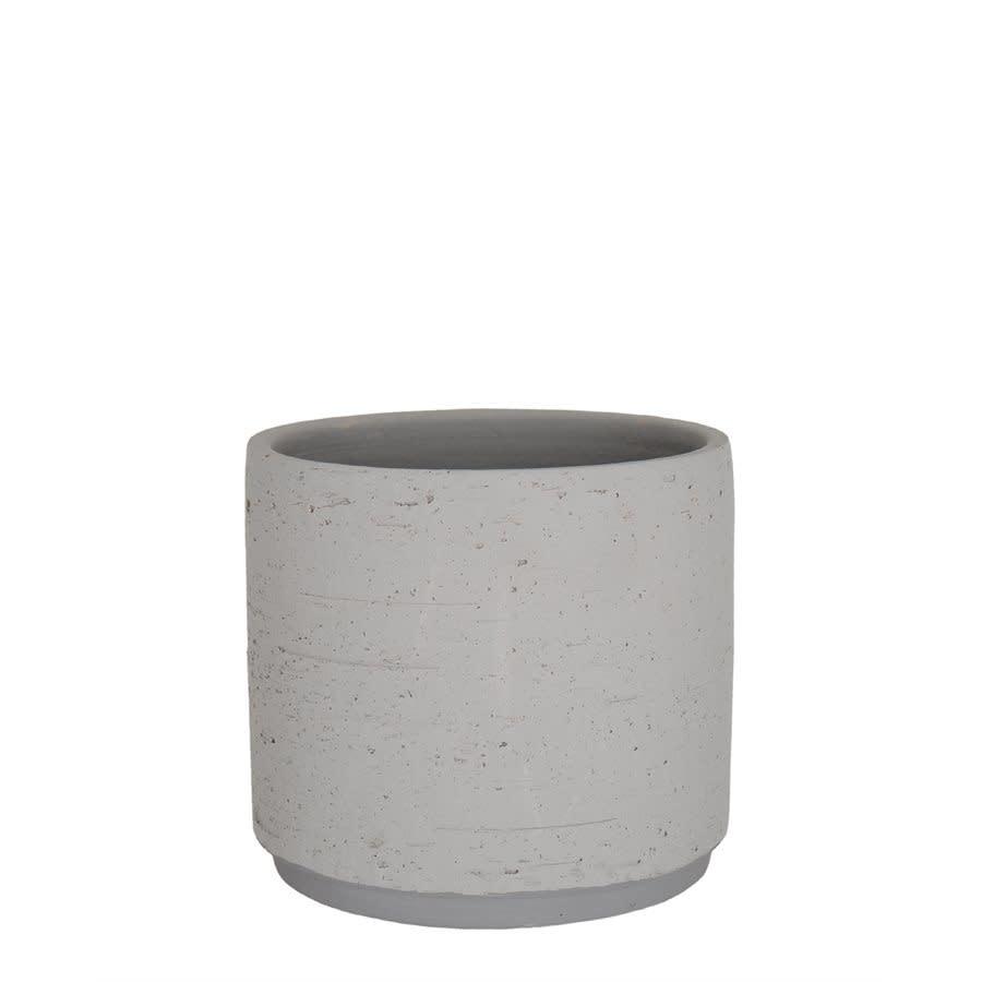 Néria gris (pot)-2
