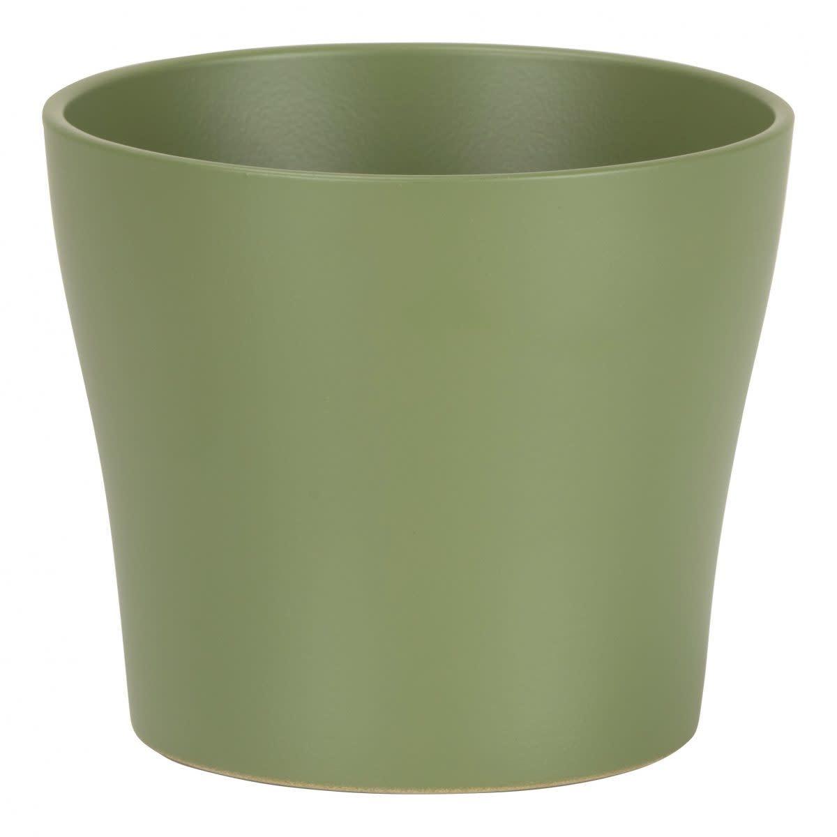 Pot Oliva-1